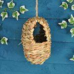 Hanging Oval Bird Roosting Nest Pocket by Wildlife World