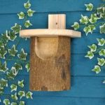 Silver Birch Robin Bird Nesting Box by Wildlife World