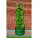 Runner Bean Bag Patio Planter by Bosmere