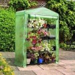 4 Tier Extra Wide Mini Greenhouse by Gardman