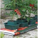 Tomato & Vegetable Growbag Pots (Set of 3) By Selections
