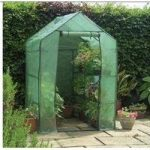 Walk-in Mini Greenhouse With Shelving by Gardman