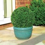 Leaf Effect Artificial Topiary Ball (40cm) by Gardman