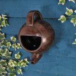 Robin Teapot Nester Bird Nest Box