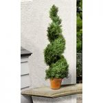 Cypress Leaf Effect Artificial Topiary Swirl Shaped Tree (80cm) by Gardman