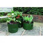 Vegetable Planters (Pack of 3) by Gardman