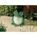 Bright Eyed Frog Spot Light (Solar) by Smart Garden