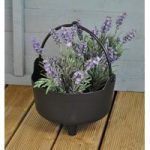 Plastic Cauldron Shaped Planter by Garland