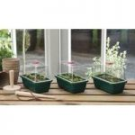 Pack of 3 Mini High Dome Seed Propagator (Unheated) by Garland