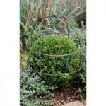 Barrington Domed Plant Support (75cm) by Garden Trading