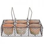 Terracotta Plant Pot & Wire Basket Set (6 Pots) by Fallen Fruits