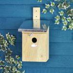 Great Tit Wooden Bird Nesting Box by Fallen Fruits