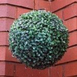 Leaf Effect Artificial Topiary Ball with LED Lights (Solar) by Kingfisher