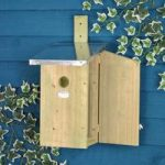 Observation Bird Nesting Box by Fallen Fruits