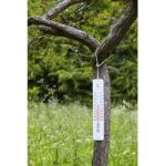 Large Wall Thermometer by Fallen Fruits