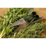 Herb Harvesting Snips by Burgon and Ball
