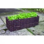 Salad Planter Wicker Surround by Selections