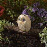 Bright Eye Stony Owl Light (Solar) by Smart Garden