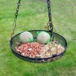 Wire Mesh Hanging Feeder Tray for Wild Birds by Kingfisher