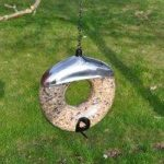Deluxe Donut Wild Bird Seed Feeder by Kingfisher