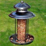 Wild Bird Deluxe Lantern Nut Feeder by Kingfisher