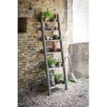 Wooden Aldsworth Shelf Ladder by Garden Trading