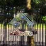 Wild Bird Window Feeder by Kingfisher