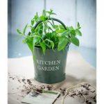 Small Kitchen Garden Bucket in Thyme by Garden Trading