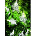 10 LED Star Shaped Filigree String Lights (Battery) by Gardman