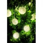 10 LED Wire Coil String Lights (Battery) by Gardman