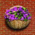 Banana Braid Garden Wall Basket Planter by Gardman