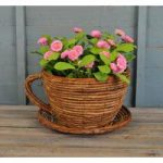 Wicker Cup and Saucer Shaped Garden Planter by Westwoods