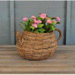 Wicker Teapot Shaped Garden Planter by Westwoods