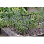 Gro-Cone Plant Support (75cm x 30cm) by Smart Garden
