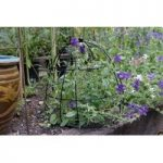 Beehive Plant Support (45cm) by Smart Garden