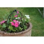 Beehive Plant Support (30cm) by Smart Garden