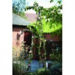 Smart Garden Quick And Easy 2.0m Gro-Belisk Plant Support