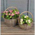 Wicker Claire Basket Planters (Set of 2) by Rustic Garden