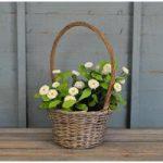 Wicker High Handled Basket Planter by Rustic Garden