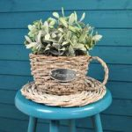 Willow Teacup Shaped Planter by Rustic Garden