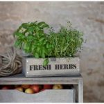 Wooden Colworth Herb Box with Galvanised Pots by Garden Trading