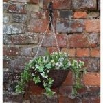 Pink And White 30cm Artificial Hanging Basket by Smart Garden