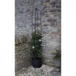 Oxford Steel Garden Obelisk (2.1m) by Smart Garden