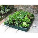 Jumbo Salad Patio Planter by Westwoods