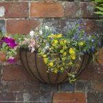Saxon Wall Manger Hayrack Planter (50cm) by Smart Garden