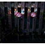 Multi Glow Gem Stake Lights Pack of 2 (Solar) by Smart Solar
