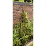Expanding Willow Garden Obelisk (1.5m) by Gardman