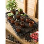 Watering Tray Kit with Capillary Matting by Gardman