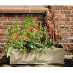 Long Tomato & Vegetable Planter by Gardman