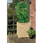 Deep Bean & Pea Patio Planter by Gardman
